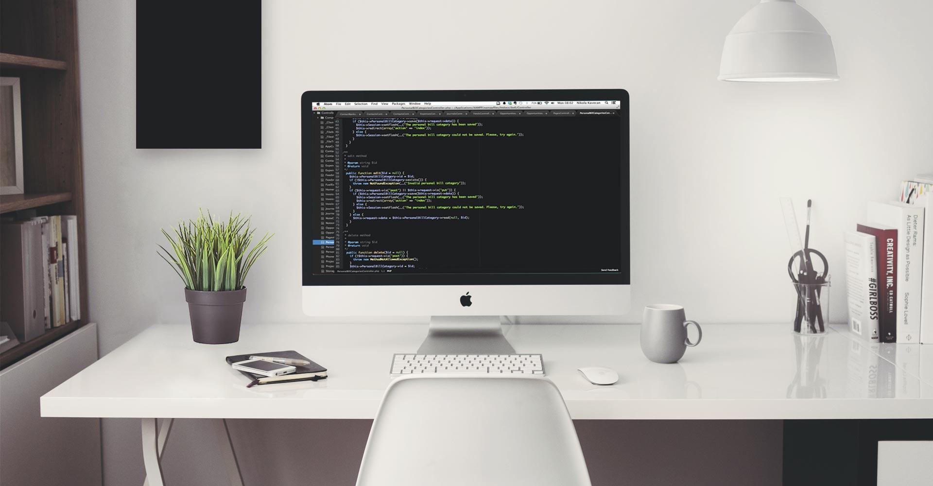 razvoj-namenskog-softvera